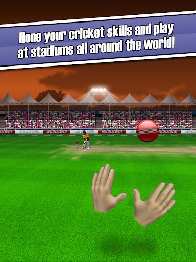 New Star: Cricket 1.19 screenshots 10