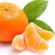 Orange HD Wallpapers para PC Windows