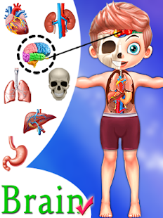 Kids Body Parts Learning Screenshot