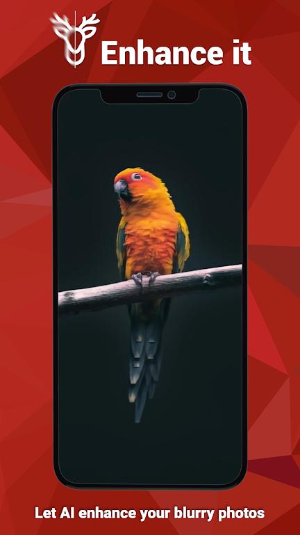 Enhance it - Fix your Photos  poster 3