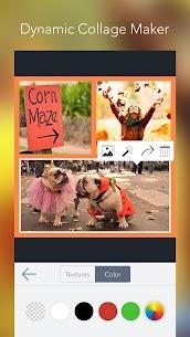 Descargar Photo Editor by BeFunky Para PC ✔️ (Windows 10/8/7 o Mac) 2