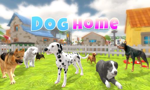 Dog Home 1