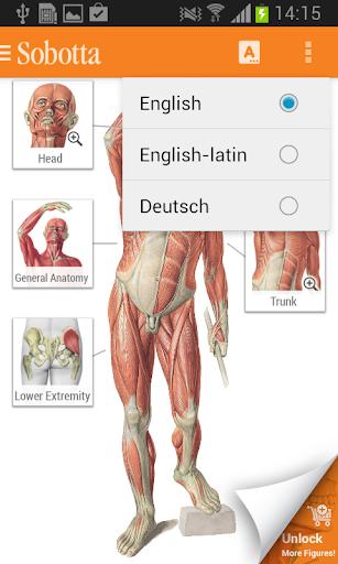 Sobotta Anatomy ss1