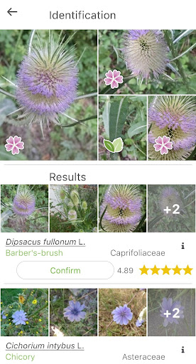 PlantNet Plant Identification  screenshots 2