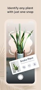 PlantIn: Plant Identification 1