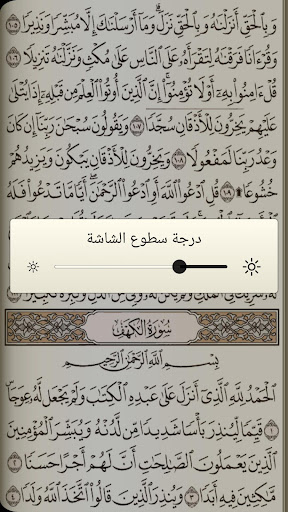 القرآن الكريم مع تفسير ومعاني كلمات  screenshots 3