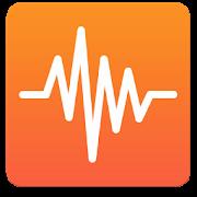 Hamm Seismograph