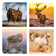 QUIZLOGO - Domestic Animals para PC Windows