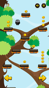 Jungle jump 5