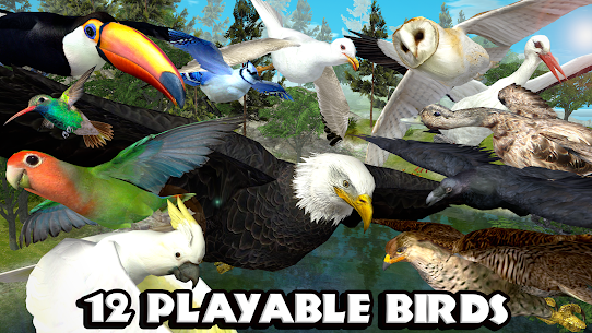 Ultimate Bird Simulator  For Pc – Download On Windows 7/8/10 And Mac Os 2