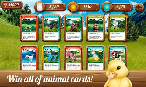 Animal Club: Play to save the Polar Bear  screenshots 19
