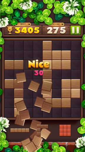 Wood Block Puzzle Game 2021  screenshots 16