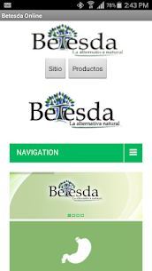 Betesda Natural For Pc, Windows 10/8/7 And Mac – Free Download 1