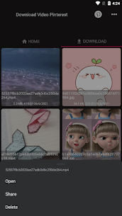 Descargar video y gif desde Pinterest 3