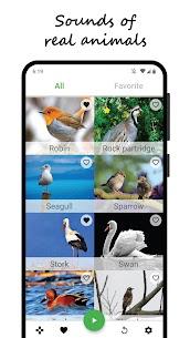 Bird sounds 3