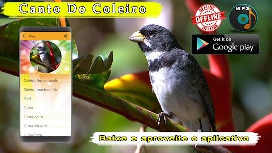 Canto De Coleiro 1.3 MOD Apk Download 3