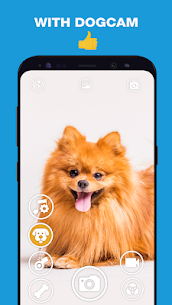 DogCam – Dog Selfie Filters and Camera 4