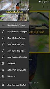 Kicau Murai Batu Full Isian 1.6 APK Mod Updated 2
