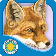 App Icon for Red Fox at Hickory Lane App in United Arab Emirates Google Play Store