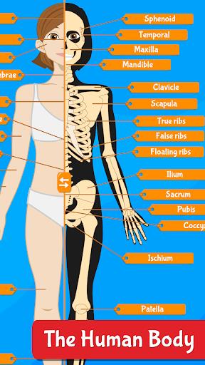 Anatomix - Human Anatomy screenshots 1