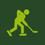 IceHockey 24 - hockey scores