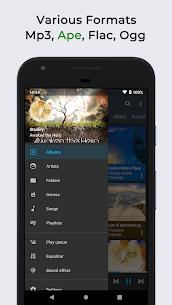 Omnia Music Player MOD APK (Premium/Lite) 2
