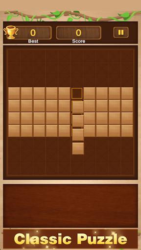 Wood Block Puzzle - Free Woody Block Puzzle Game  screenshots 14