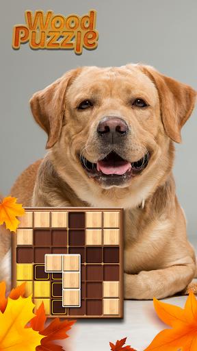 Wood Block Puzzle Sudoku 99 1.0.9 screenshots 11