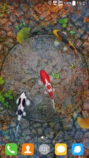 Water Garden Live Wallpaper 1.75 Screenshots 6