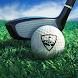 パーフェクトスイング - ゴルフ