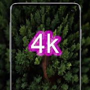 green wallpaper - HD,4K background