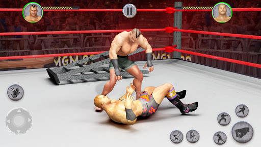 Tag Team Wrestling Superstars Fight: Hell In Cell screenshots 2