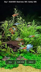 Tropical Fish Tank – Mini Aqua 3