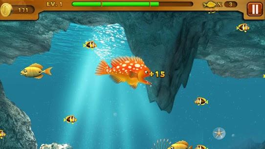 Cá lớn nuốt cá bé 3