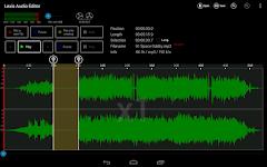 screenshot of Lexis Audio Editor