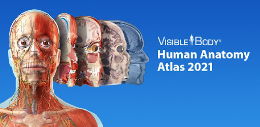Human Anatomy Atlas 2021 APK (Latest Version) for Android