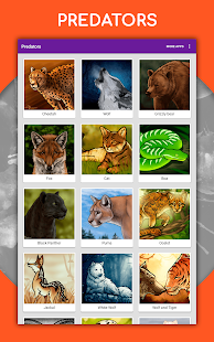 How to draw animals. Step by step drawing lessons 1.5.3 Screenshots 18