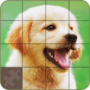 Puzzle - Dogs and Puppies