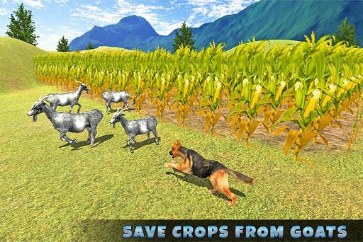Real Dog Shephard World SIM 1.1 screenshots 3