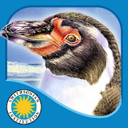 App Icon for Penguin's Family App in Slovakia Google Play Store