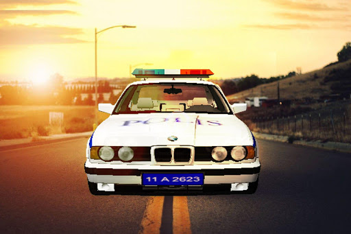 police simulator 2 screenshot 1