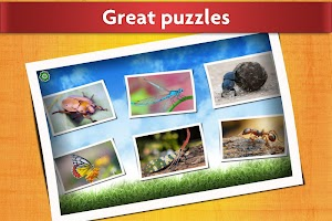 Insect Jigsaw Puzzles Game - For Kids & Adults