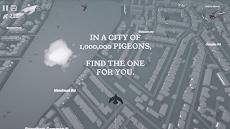 Pigeon: A Love Storyのおすすめ画像1