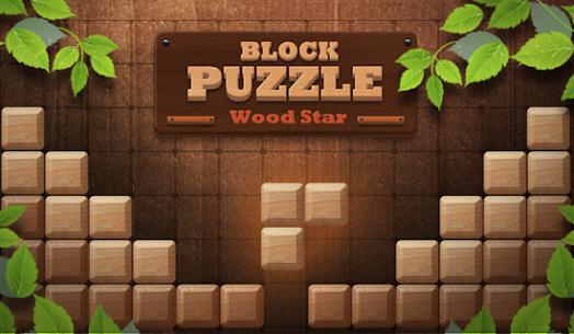 Block Puzzle Wood Star2020 6