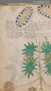 Voynich Manuscript Screenshot