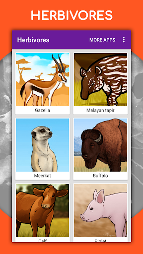 How to draw animals. Step by step drawing lessons 1.4.1 Paidproapk.com 3