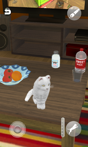 Talking Cute Cat screenshots 5