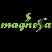 Magnessa