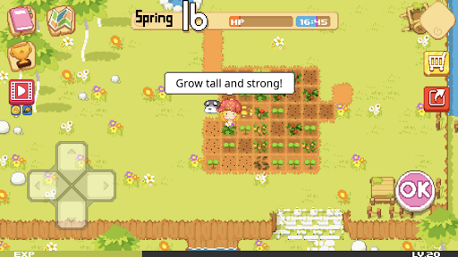 The Farm : Sassy Princess  screenshots 10