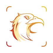Picture Bird - Bird Identifier